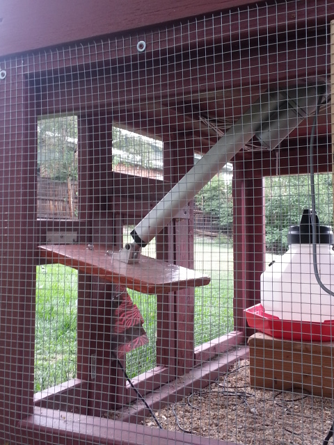 Raspberry Pi-controlled chicken coop